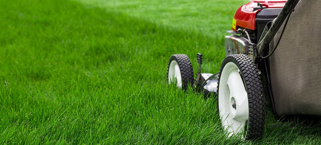 Naperville Lawnmower Repair